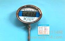 径向数字温度计DTM-411