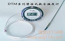 软管连接数字温度计